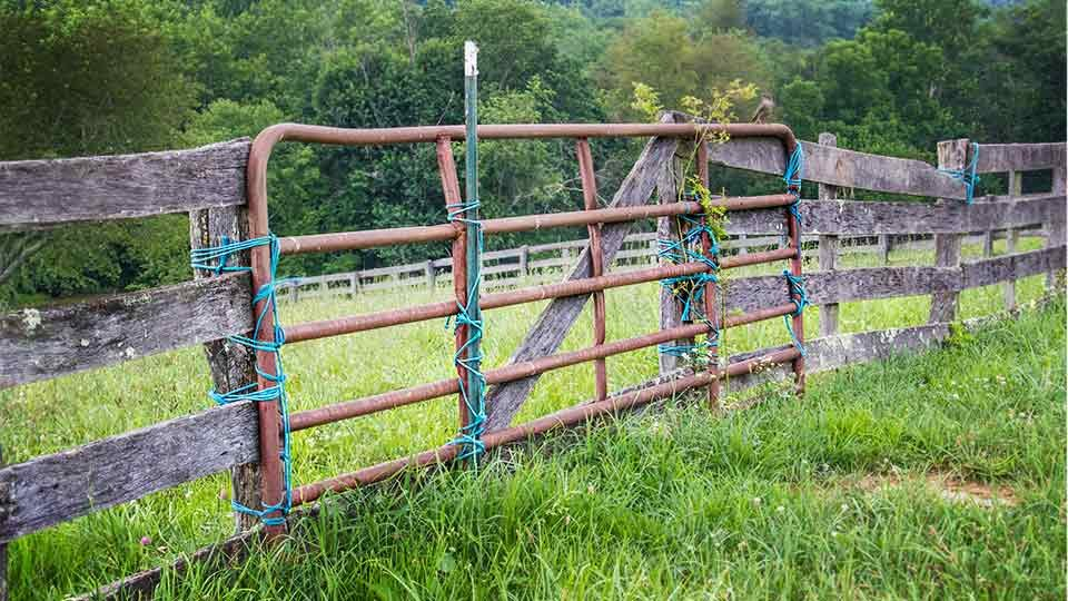 old horse fence gate