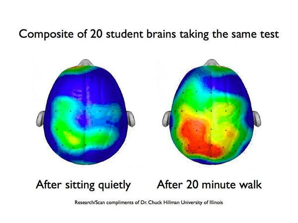brain activity when active