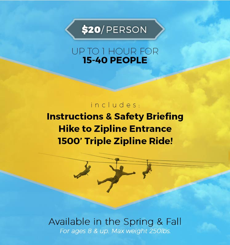 Zipline Group Rates